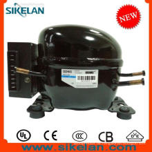 Hohe Effizienz DC Kompressor 12 V 24 V Kompressor Qdzh65g R134A Lbp für Auto Kühlschrank Gefrierschrank