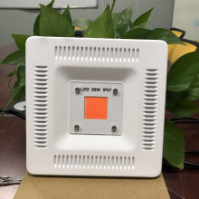 cob led grow light shenzhen wenyi 50w grow