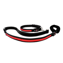 Led Light Up Lead Leash With Light For Dogs