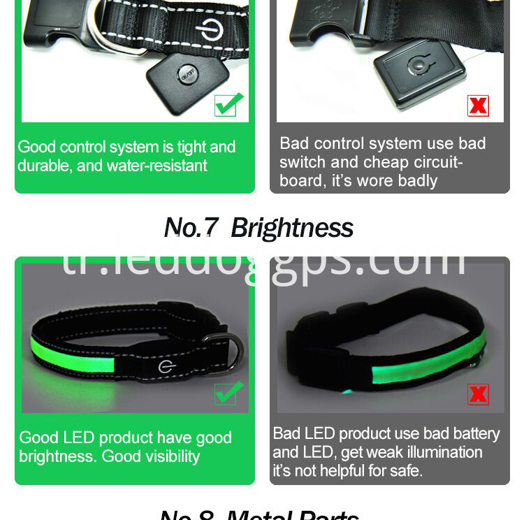Night Dog Collar