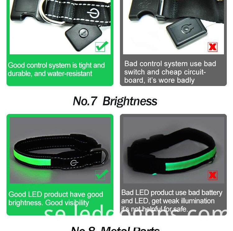 Nylon Led Dog Lead
