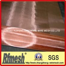 Rede de arame de bronze do fósforo / malha de arame de cobre / pano de fio bronze do fósforo