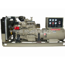 Heißer Verkauf 8KW zu 140KW Ricardo Stromgenerator