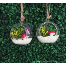 MIni planta de flor suculenta artificial con maceta de vidrio
