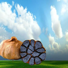 Berumur Hitam Bawang Putih Dengan Antioksidan Ganda