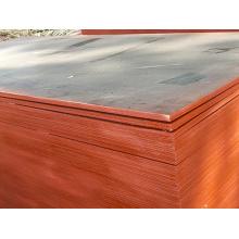 Gebrauchte Sperrholzplatten Pappelkern für Beton Nutzungen