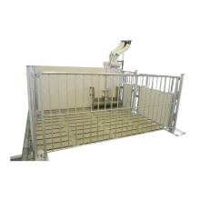 Automatic pig feeder for pig fattening used pig cage