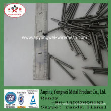 YW--High quality common nail product