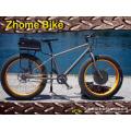 Велосипедов части/E-велосипед частей/Fat велосипед частей E-велосипед мотор дисковый тормоз 750W 500W