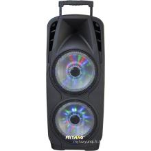 Haut-parleur rechargé professionnel de Bluetooth de puissance de 10inche double professionnel pour le karaoke 80W F73D de partie d'étape