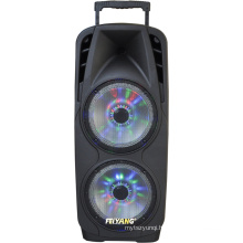 Professional Double 10inche Big Power Recharged Bluetooth Loudspeaker for Stage Party Karaoke 80W F73D