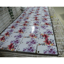 Smart Phone Cases Printing Machine for iPhone (Colorful 6015)