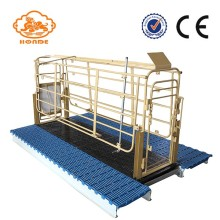 Hot Galvanized Sow Farrowing Stalls para la venta