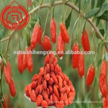 Bayas de goji de Ningxia en frutos secos bayas de goji a granel venta de bayas de goji en venta