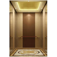 Machine Roomless Villa Elevator for Hot Sell