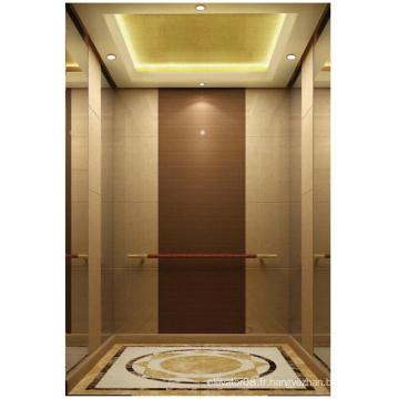 Ascenseur de villa sans machine pour vente chaude
