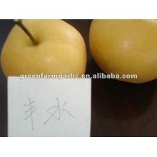 2012 feng shui pear