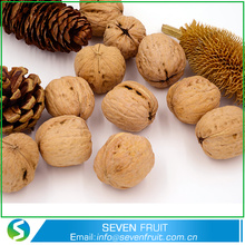 Whole Sale Natural Dried Walnut In Shell