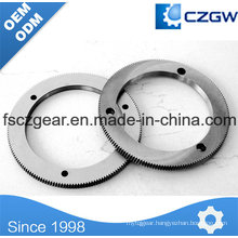 OEM Transmission Gear Ring Gear for Various Machinery