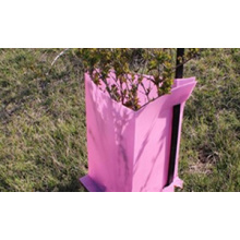 Good Quality for Garden Plastic Sheet PP Corflute Tree Guards supply to Spain Supplier