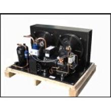 Unidades condensadoras semi-herméticas de Dwm Copeland para o uso da sala fria