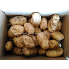 Precio de la patata fresca por tonelada