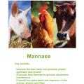 Nutrizyme® β-Mannase in Futterqualität