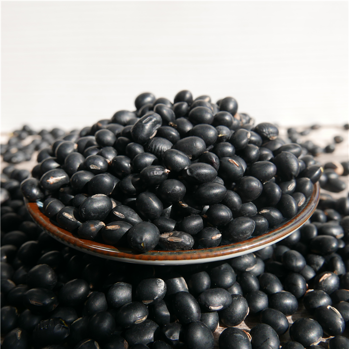 Big Black Bean con buona qualità