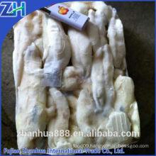 Thailand market frozen illex squid roe egg