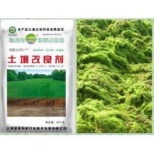 Algues bio Ferment bio à base de microbienne pour l'assèchement des sols
