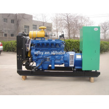 30KW Natural Gas Power Generator Set