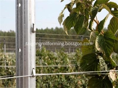 Vineyard Post Making Machine