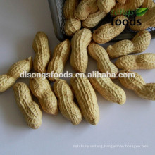 Find Wholesale Peanut for Buyers Worldwide