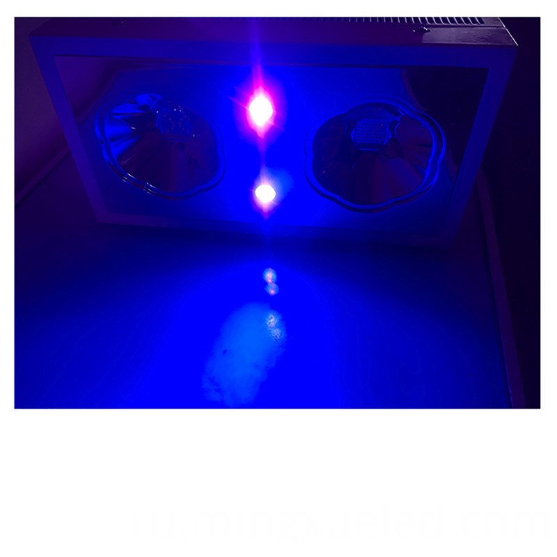 hydroponic vertical grow system 300W led grow light