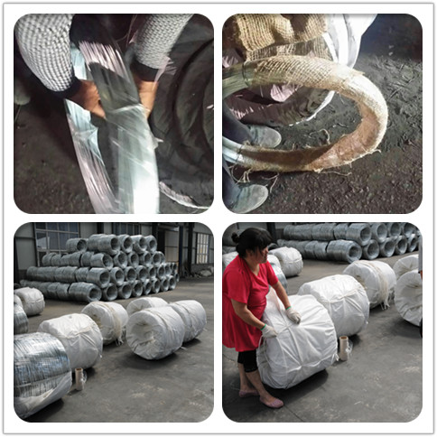 packing of electro galvanized iron wire