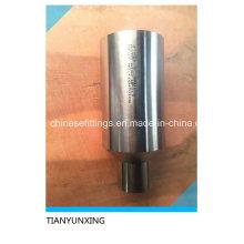 Aço Inoxidável A182 Wp317 Conexões Polimento Swing Nipples