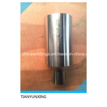Stainless Steel A182 Wp317 Fittings Polished Swage Nipples