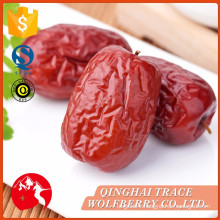 Good quality sell well jujube