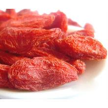 Ningxia Высокое качество сушеных ягод Goji (WolfBerry)