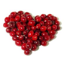 Pó de Cranberry / Pó de Suco de Cranberry / Pó de Extracto de Cranberry