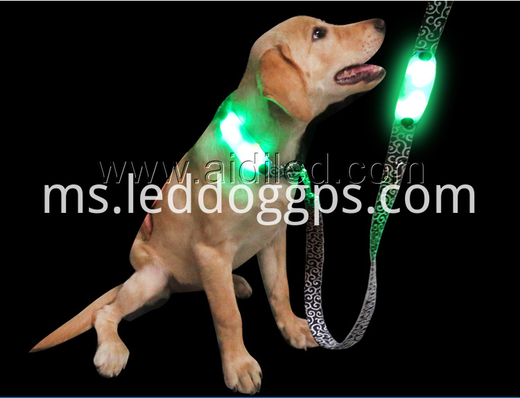 Nylon Flashing Dog Lead