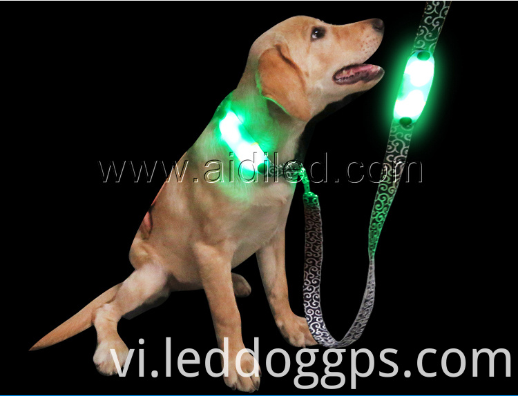 Light-Up Dog Leash