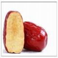 China-Shanxigesundheits-rote Datescheibe