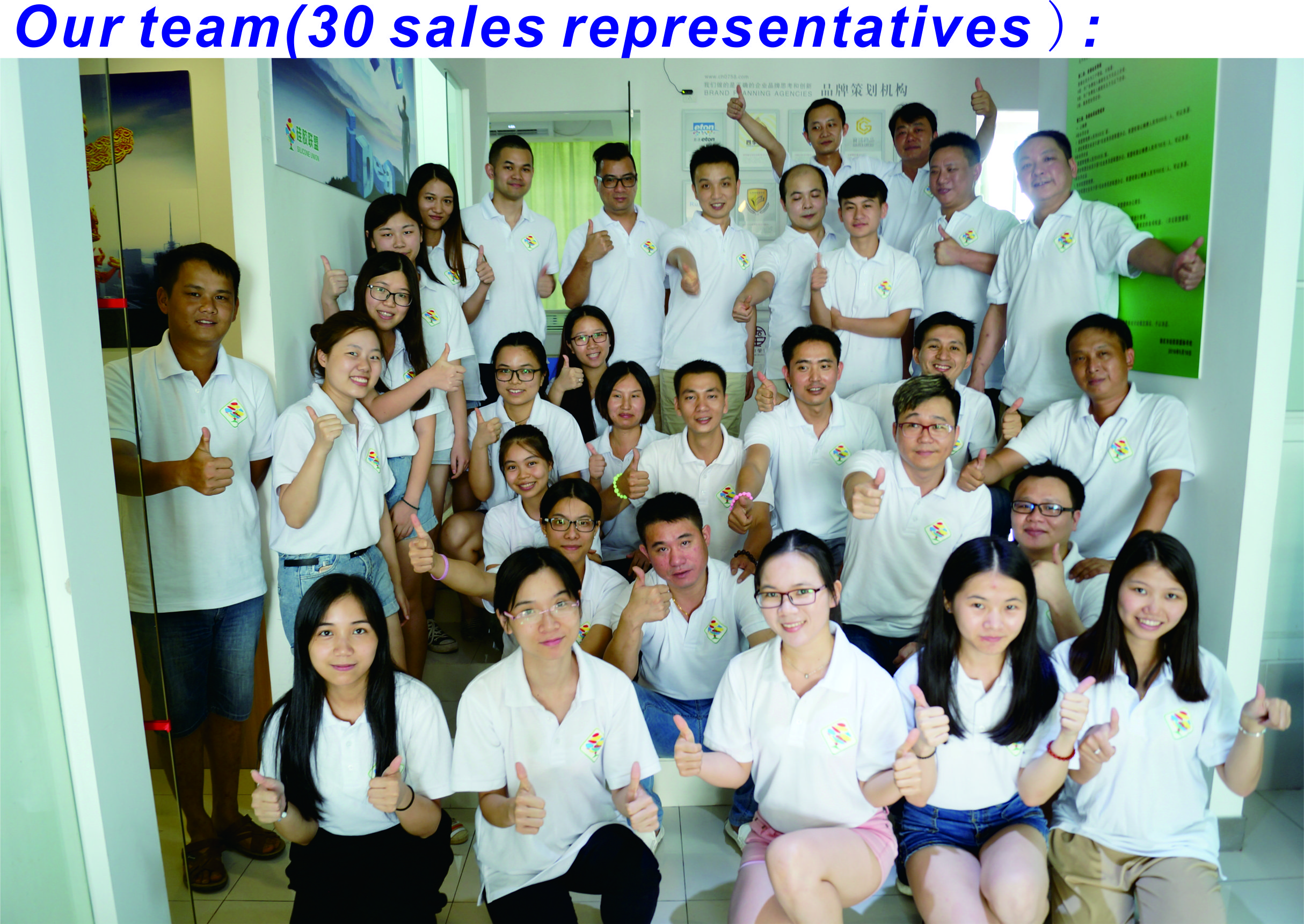 Our team(30 sales representatives )