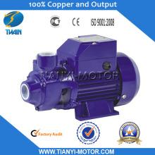 Qb80 1 HP Motor Water Pump