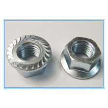 Plain Stinless Steel Hex Flange Nut (DIN6923)