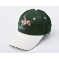 Бейсбольная кепка A10 с вышивкой