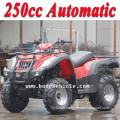 NEW china 250cc quad's with Automatic (MC-356)