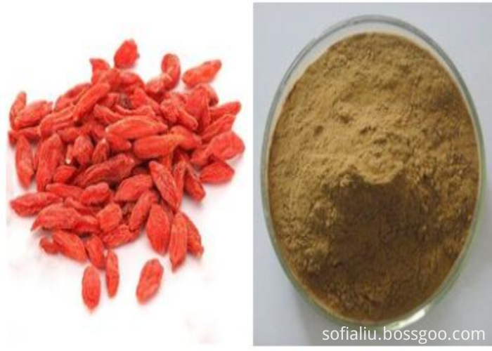 goji powder (12)