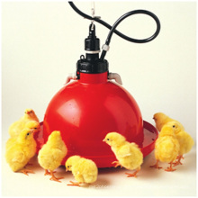 Automatic PE Material Plasson Chicken Drinker